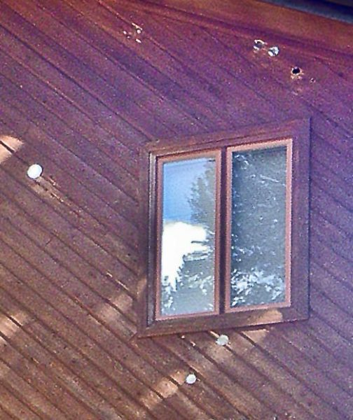 Woodpecker holes in cedar siding.